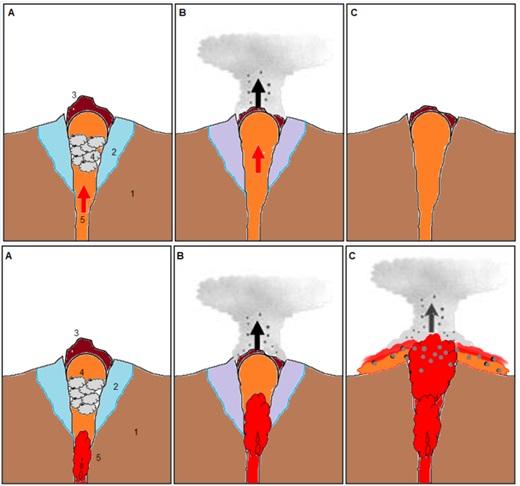 Gambar 2. Gambaran kartun sederhana yang memperlihatkan perbedaan mekanisme erupsi freatik yang ditenagai uap air (atas) dan magma segar (bawah). Pada erupsi yang ditenagai uap air, sumber panas (5) adalah gas vulkanik panas yang terlepas dalam jumlah besar namun terhalangi keluar dari kawah akibat sumbatan kubah lava (3) sehingga memanaskan air bawah tanah disekelilingnya (2) hingga menjadi uap panas yang terakumulasi dan bertekanan tinggi (4). Campuran uap dan gas vulkanik panas bertekanan tinggi lantas menjebol bagian kubah lava di titik terlemahnya dan menyembur sebagai asap (kolom erupsi) yang membawa serta material produk erupsi. Begitu uap dan gas vulkanik telah keluar semua maka erupsi pun berhenti. Sebaliknya erupsi freatik yang ditenagai magma segar, sumber panasnya adalah magma segar (5) yang sedang menanjak naik hingga memanaskan air bawah tanah di dasar kubah lava. Setelah uap dan material erupsi freatik tersembur keluar melalui bagian kubah lava yang lemah, magma segar terus bergerak naik sehingga erupsi freatik terus terjadi berulang-ulang dengan intensitas kian meningkat. Pada puncaknya magma segar akhirnya benar-benar keluar di permukaan Bumi melalui kawah, menghasilkan lava dan awan panas. Sumber: Sudibyo, 2014.